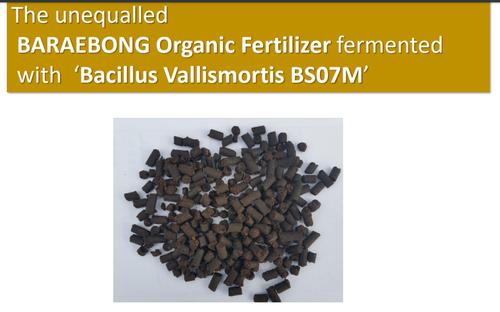 Organic Fertlizer
