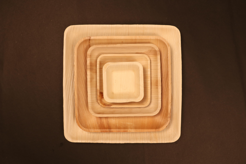 Areca Palm Plates & Bowls