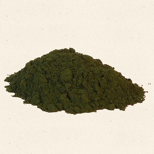 Spirulina Salina Extract