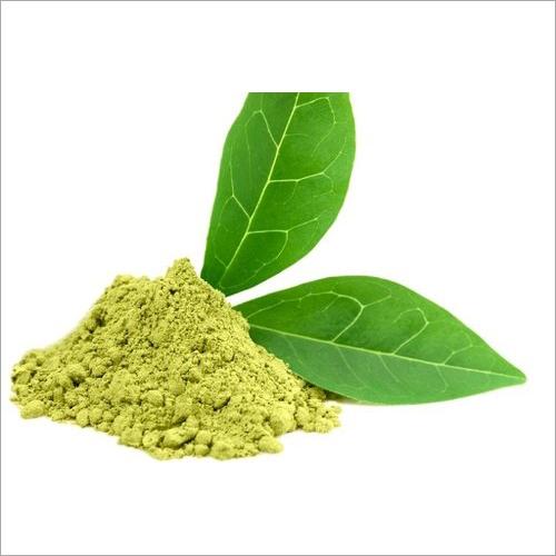 50 Percent Green Tea Extract