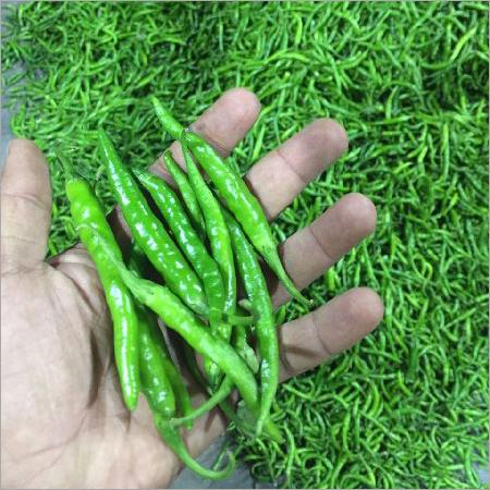 G4 Green Chilli