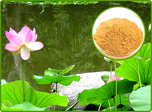 Kamal / Padda kasta (Aqueous Soluble)