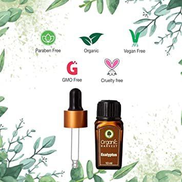 Organic Harvest Eucalyptus Essential Oil