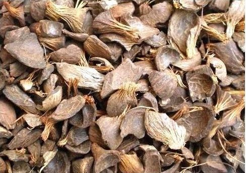 Quality Pure Palm Kernel Shell for Sale
