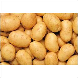 Indian Potato