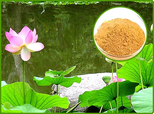 Kamal / Padda kasta (Oil Soluble)