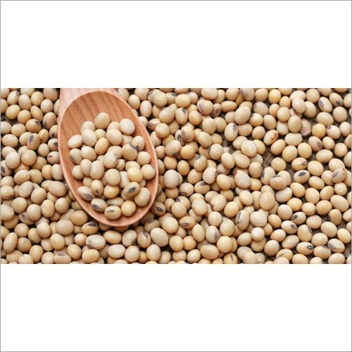 Fresh Soybean
