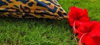 Kirti Finishing  Brown Leopard Print Velvet Cushion Cover 16 inches Set of 5