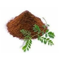 Phyllanthus Amarus Extract
