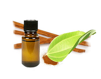 Cinnamomum Cassia Oil