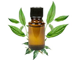 Cinnamomum Cecidodaphne Oil