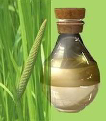 Acorus Calamus Oil