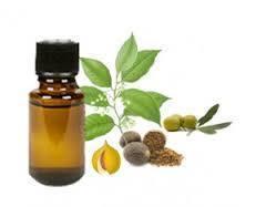 Myristica fragrans (Nutmeg Oil)