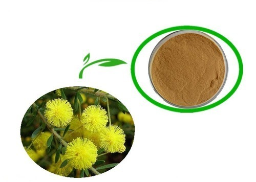 Herbal Food Supplements Extracts