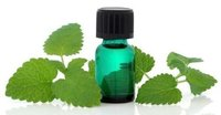 Melissa Officinalis Oil