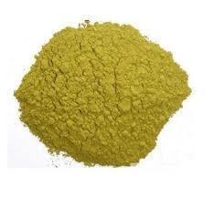Ginkgo Biloba Extract 24% 6%