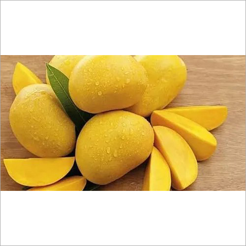 Concentrate Mango Pulp