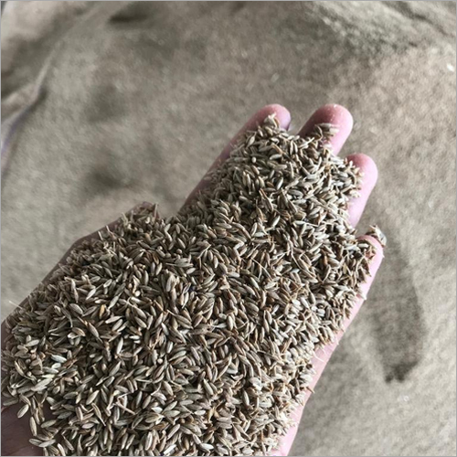 Cumin Seed And Powder
