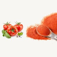Premium Quality Tomato Powder