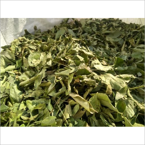 Dried Curry Leaves