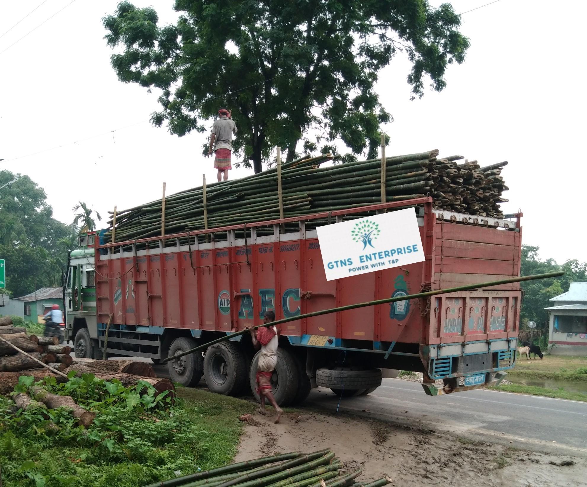 24 feet Bamboo pole