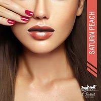 Chariot New York Saturn Peach Lipstick (Peach)