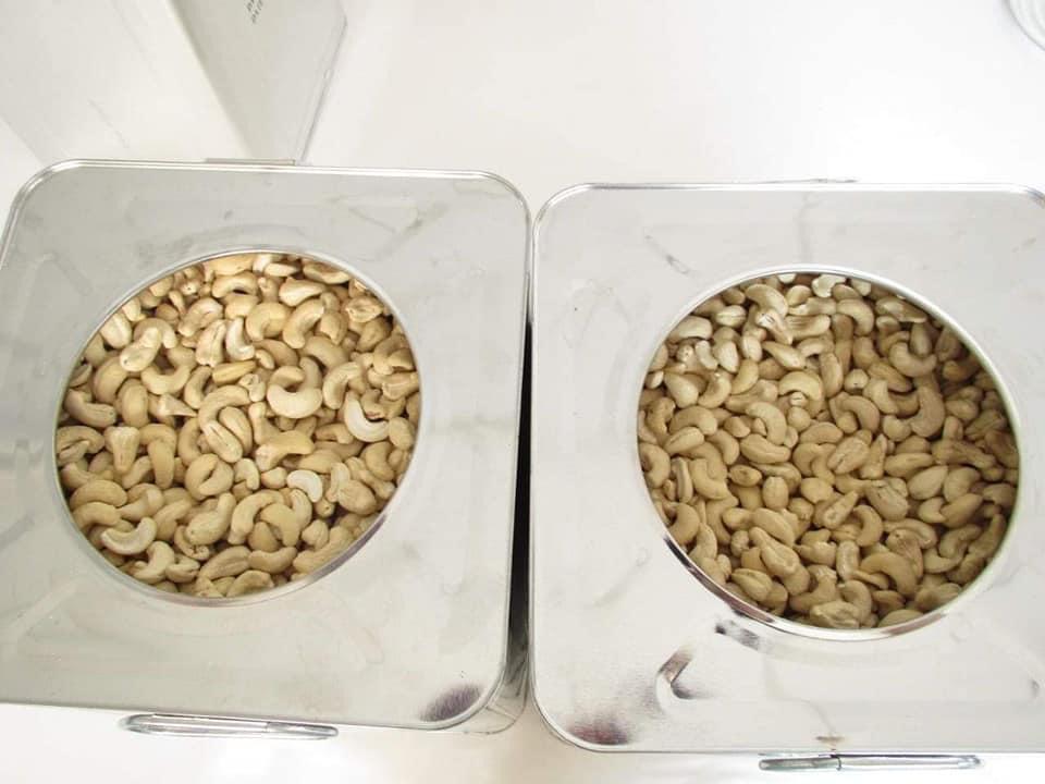W210 Cashew Nuts Kernels For Sale