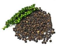 Piper Nigrum/ Black Pepper