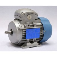 DUAL SPEED INDUCTION MOTOR