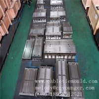 Nylon cable tie mould with high quality low price 20 year experience