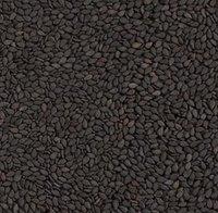 Black Sesame Seeds for sale