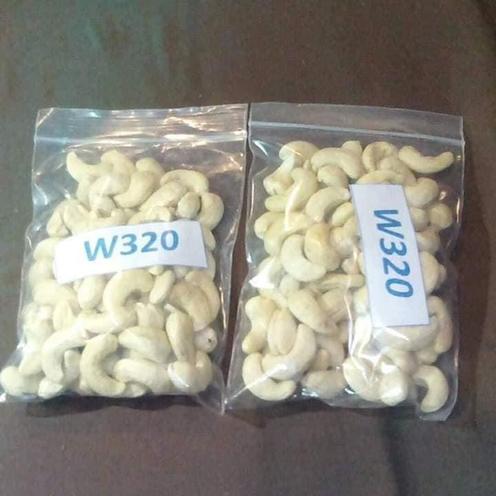 Raw White Processed Cashew Nut