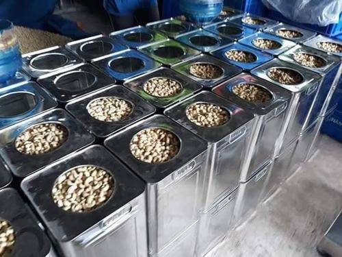 Cashew nuts for sale