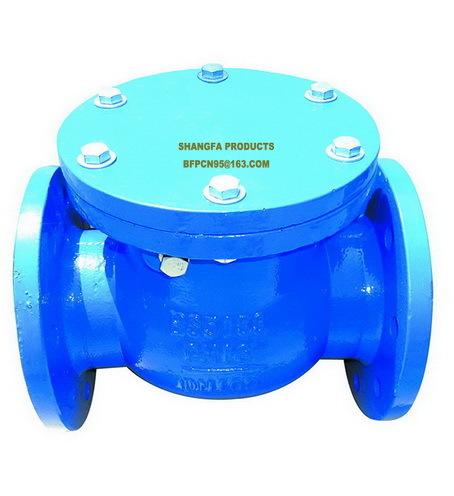 Swing rubber flap check valve