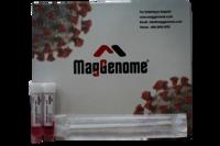Mag Genome MOLECULAR TRANSPORT MEDIUM