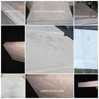Mould Fly Ash Bricks Pallet