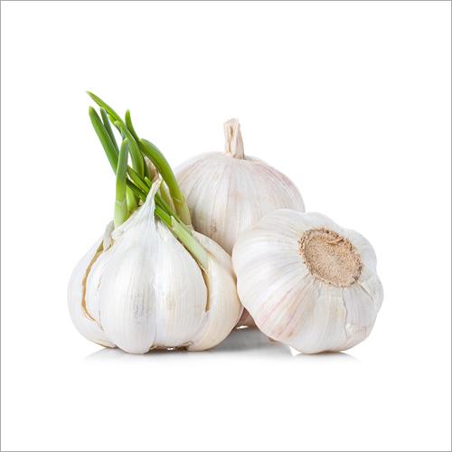 Natural White Garlic