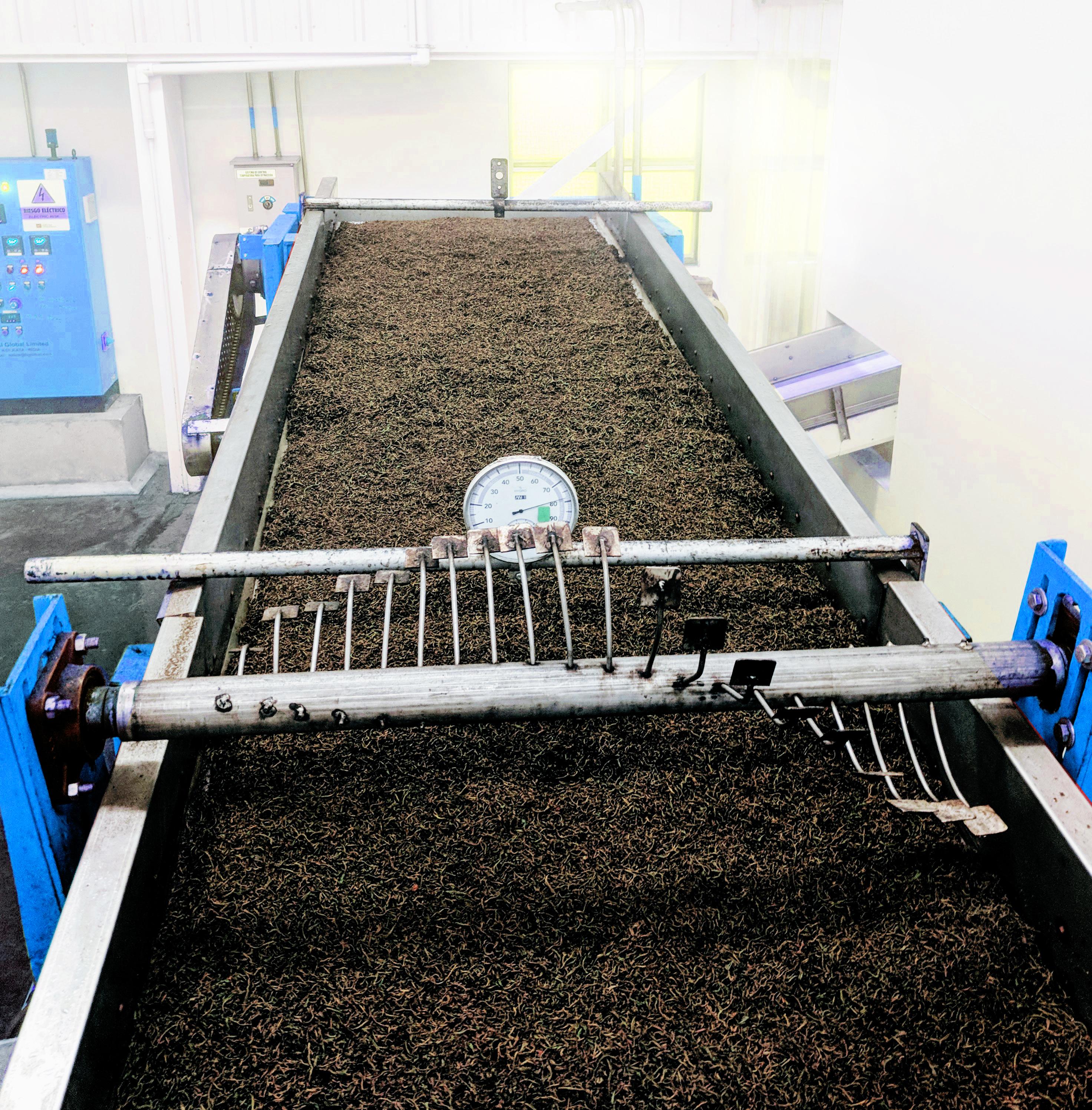 TEA PROCESSING PLANT MACHINERY
