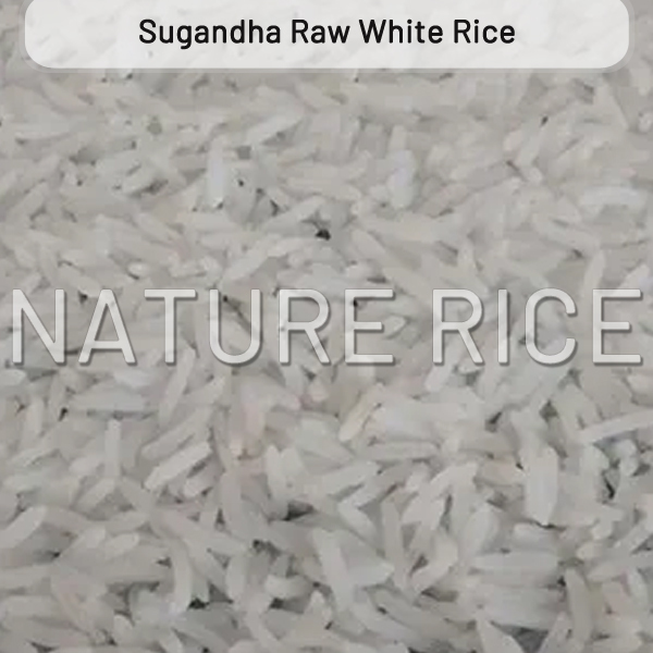 Sugandha White Raw Rice