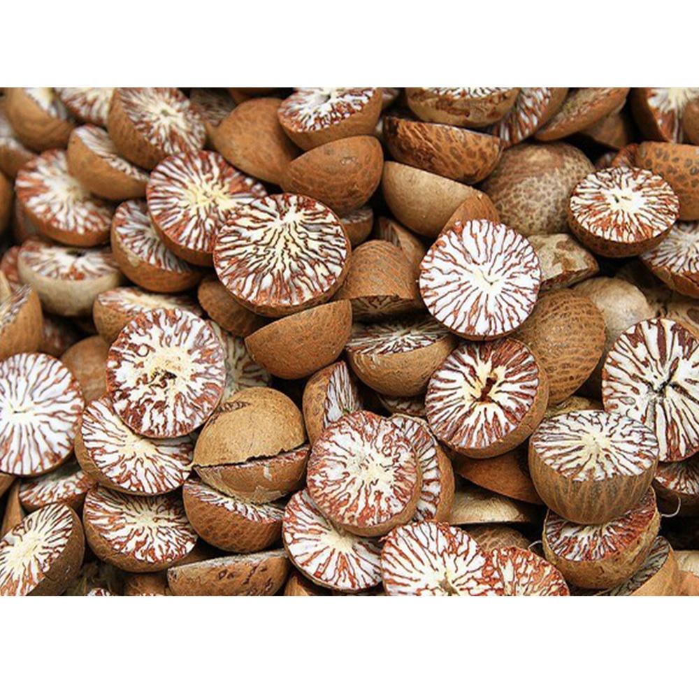 Natural Brown Betel Nut Split Cut