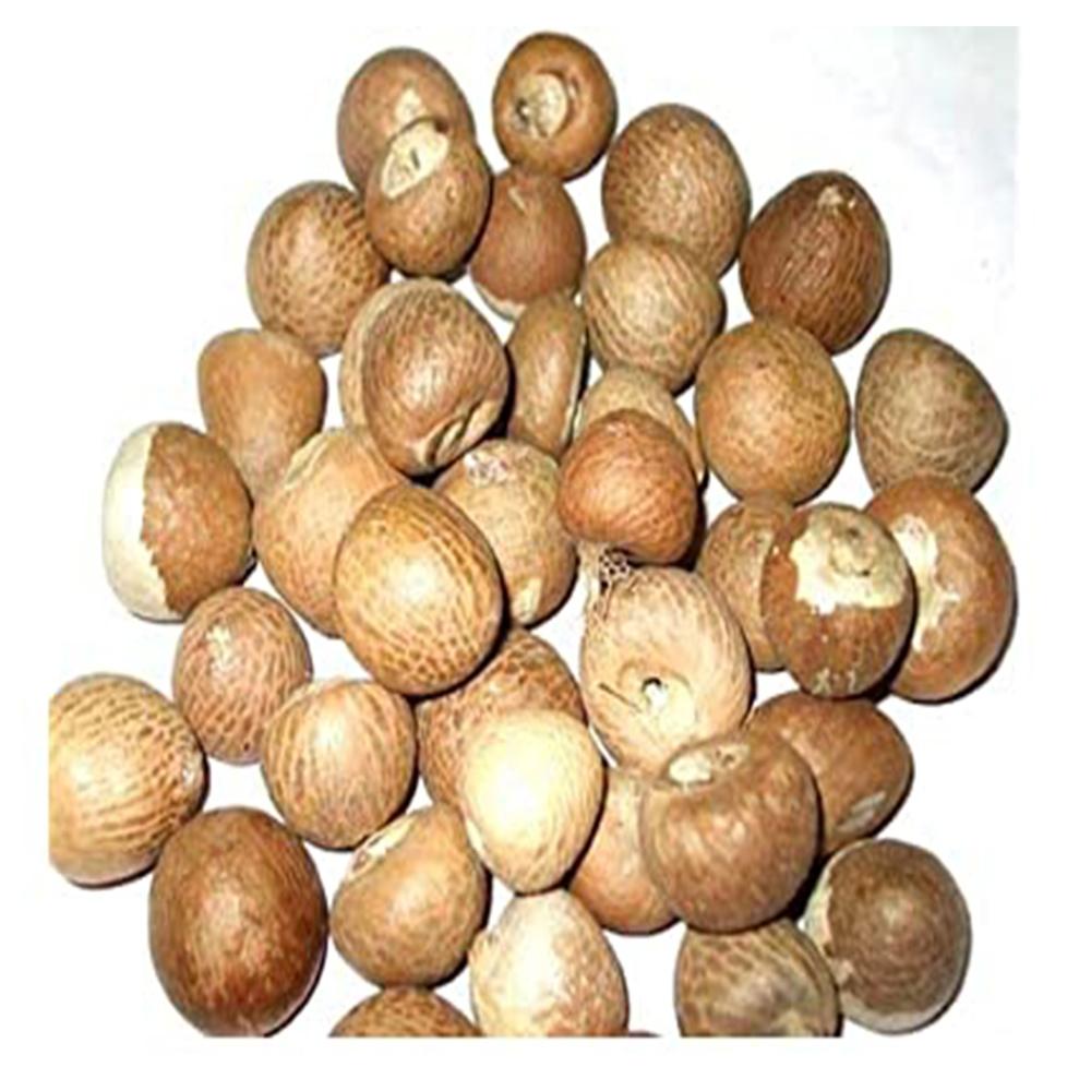 Betel Nuts New Stock