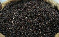 Black Pepper. Black And White Pepper