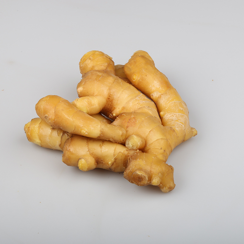 Best Quality Fresh Ginger For Sale
