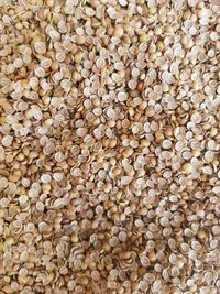 Split Coriander Seeds