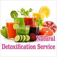Natural Detoxification Service