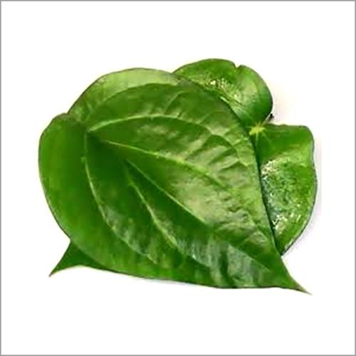 Khari Leaves