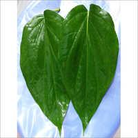Pali Leaves