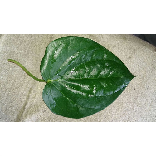 Betel Leaves Mitha (Sweet)