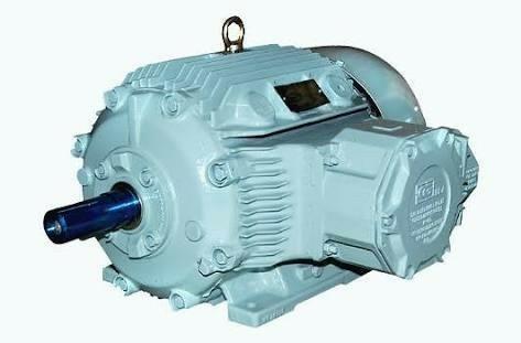 IE2 High Efficiency Flame Proof Motors