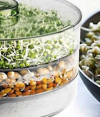 Sprout Maker 3-layer